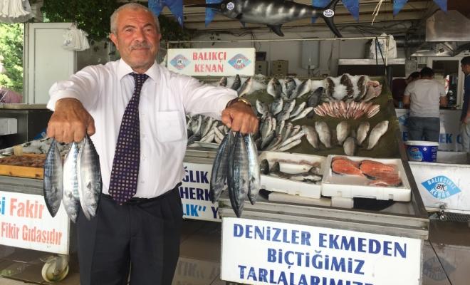 Balıkçı Kenan